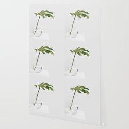 Single Monstera Leaf In Clear Glass Zen Minimalist House Plant Photo Wallpaper
