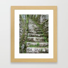 Steps on the Inca Trail Framed Art Print
