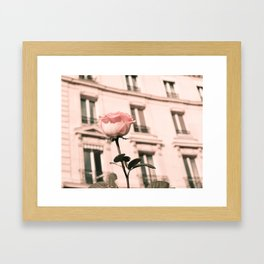 Paris in Blush Pink II Framed Art Print