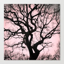 Tree Silhouette - Pink Canvas Print