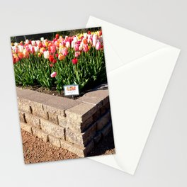 Muscogee (Creek) Nation - Honor Heights Park Azalea Festival, No. 12 of 12 Stationery Cards