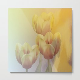 Tulips in golden light Metal Print