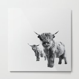 LULU & SARA - Scottish Highland Cows Metal Print