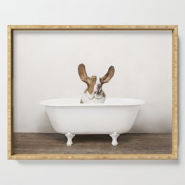 Basset Hound in Vintage Bathtub Serving Tray