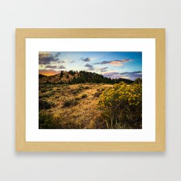Wyoming Wildflowers Sunset Framed Art Print