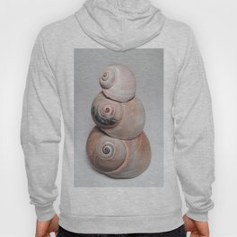 Shell Tower (Version 2) Hoody