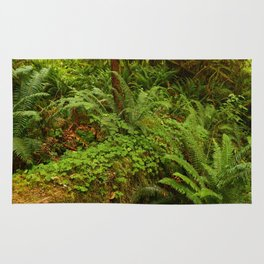 In The Cold Rainforest Rug