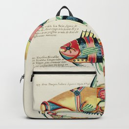 Colourful and surreal s of fishes and crab found in the Indian and Pacific Oceans by Louis Renard (1 Backpack