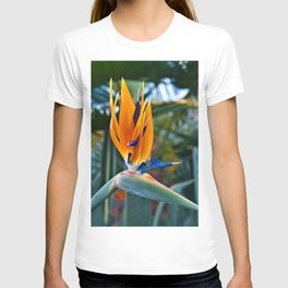Magic Bird of Paradise T-shirt