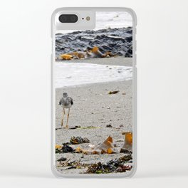 Greater Yellowlegs Strolling on the Beach Clear iPhone Case