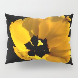 Yellow tulip flower on a black background Pillow Sham