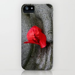 A Peace of Buddha in Photography iPhone Case