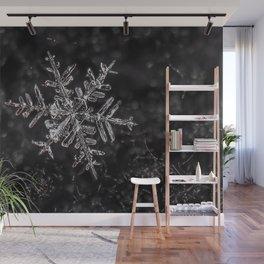 Snowfake on some fleece Wall Mural
