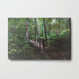 Forest Trail XLV Metal Print
