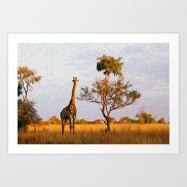 African landscape Art Print