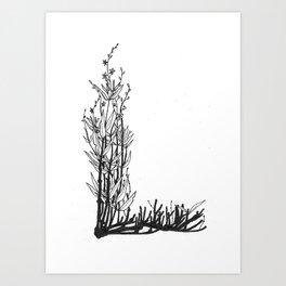 """Native Texas Plants """"L"""" Art Print"""