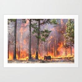 Brink of Fire Art Print