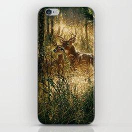 Whitetail Deer - A Golden Moment iPhone Skin