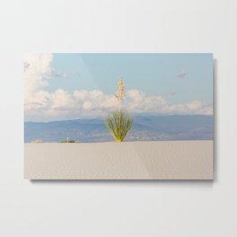 White Sands, No. 3 Metal Print