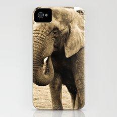 Elephant. Slim Case iPhone (4, 4s)