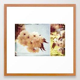 Cherry Blossom Dreaming Framed Art Print