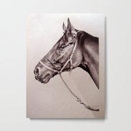 Sir Alfred - Racehorse Metal Print
