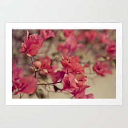 Red Flowers #2 Art Print