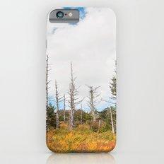Trees in Mt. Rogers, Virginia Slim Case iPhone 6s