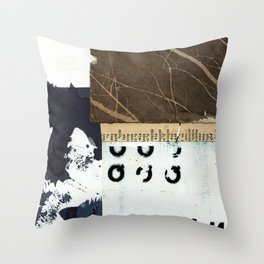 Divided Stories Throw Pillow