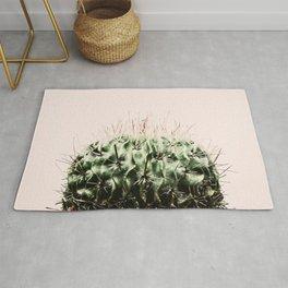 Cactus on pink Rug