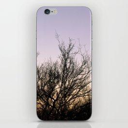 Sunset Cacti iPhone Skin