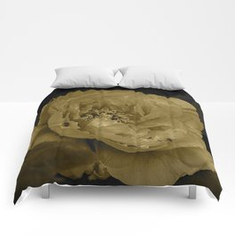 Draining Coloration Comforters