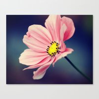 cosmos Canvas Prints featuring Cosmos by Lawson Images