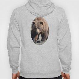 Alaskan Grizzly Bear - Spring Hoody