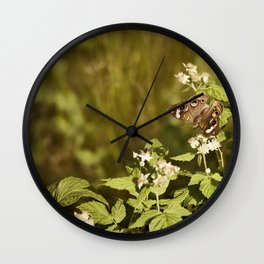Beautiful Buckeye Wall Clock