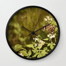 Beautiful Buckeye Wall Clock