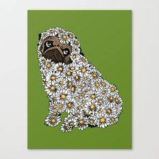 Pug Daisy Canvas Print