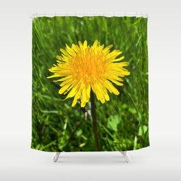Annoying Beauty Shower Curtain