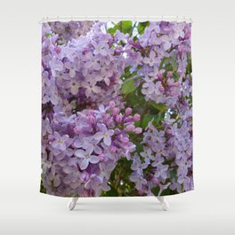 Lilac ~ Periwinkle Shower Curtain