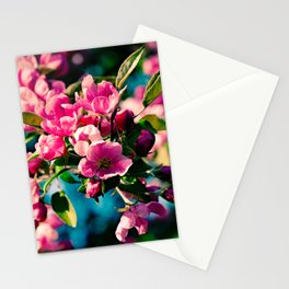 Pink Crab Apple Flowers Stationery Cards