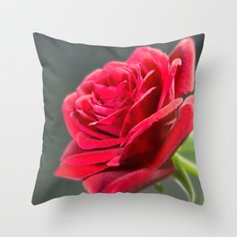 Red Roses 2 Throw Pillow