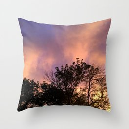 the skeleton of sunsets Throw Pillow