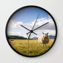 Sheep grazing Lake District, England Wall Clock
