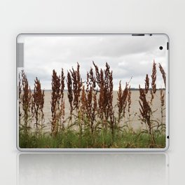James River Laptop & iPad Skin