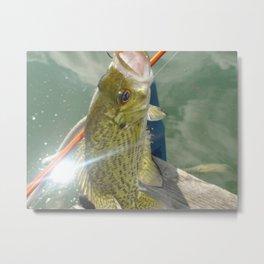 Glistening Bass Metal Print