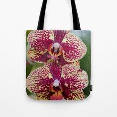 Orchid Phalaenopsis 7989 Tote Bag
