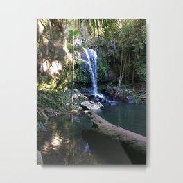 Curtis Falls Tamborine Australia Metal Print