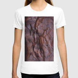 Raisin T-shirt