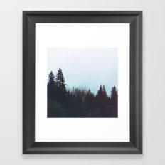 Washington Woodlands Framed Art Print