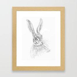 Hare Sketch Framed Art Print